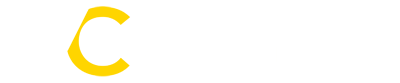 Valentin Consulting Logo
